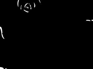 germainea